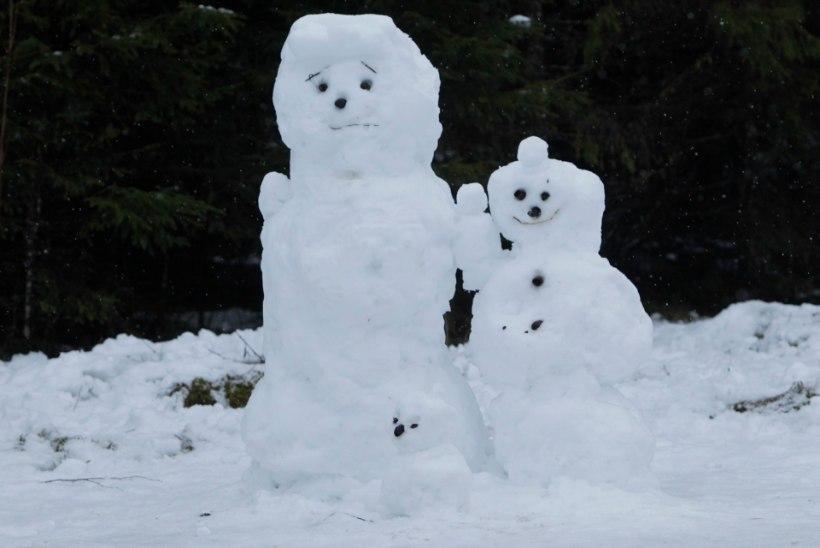 Vene ilmaportaal lubab jõuluks miinuskraade ja lund
