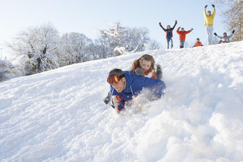 TÕELISED FANATID: inimesed, kes armastavad lund!