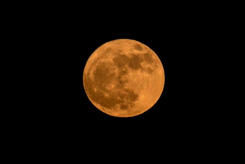 UUS DIREKTIIV: Donald Trump saadab ameeriklased taas Kuule