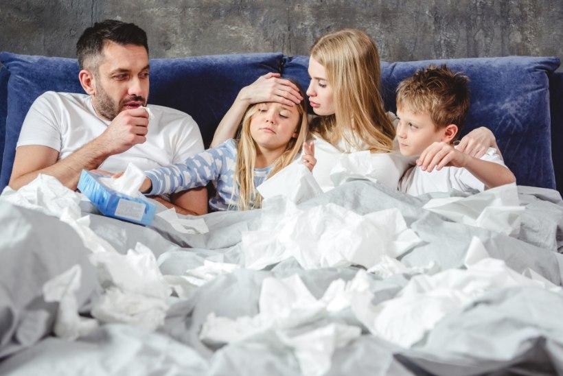 Gripp murdis eelmisel nädalal maha ühe pere neli liiget