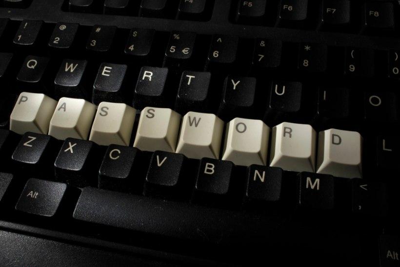 IT-ekspert Roonemaa soovitab kiiresti netiparoolid ära vahetada