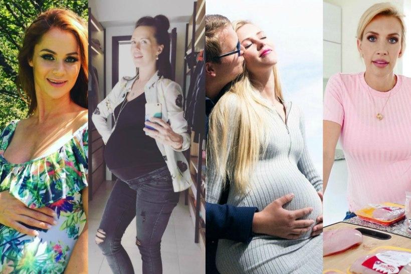 SUUR GALERII: need Eesti tähed teatasid 2017. aastal enda lapseootusest!
