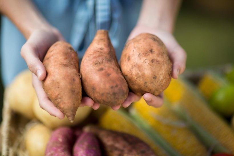 TALVEL PARIMAD: kaheksa toitu, mis hoiavad su tervena