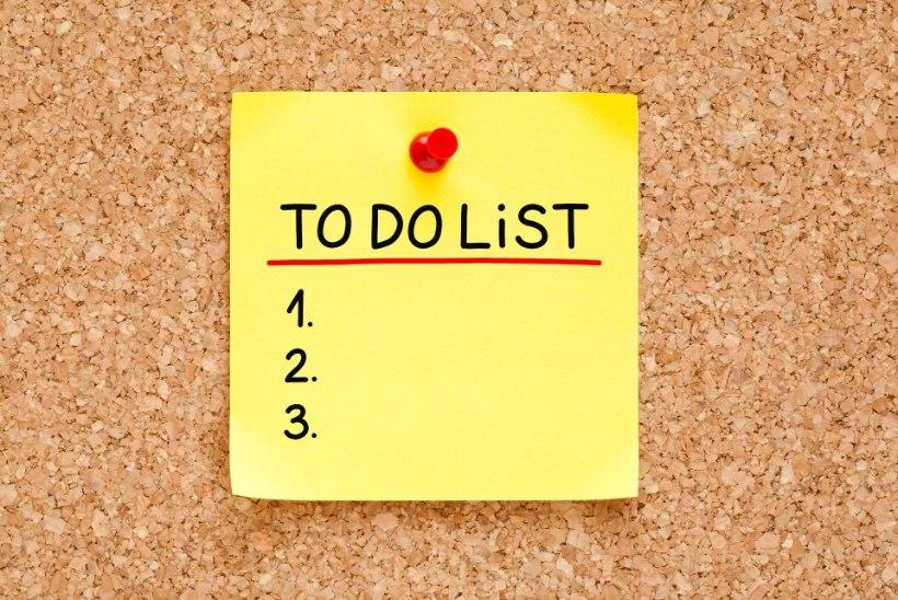Blogija jagab oma eesmärke! Kas sina täitsid selle aasta lubadused?