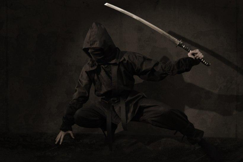 NINJA-PÄEV! Tee ise jõulukingiks ehtne ninjamõõk
