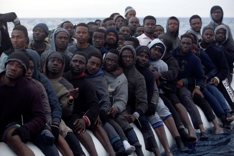 Põgenikevool Euroopasse hoogustub taas