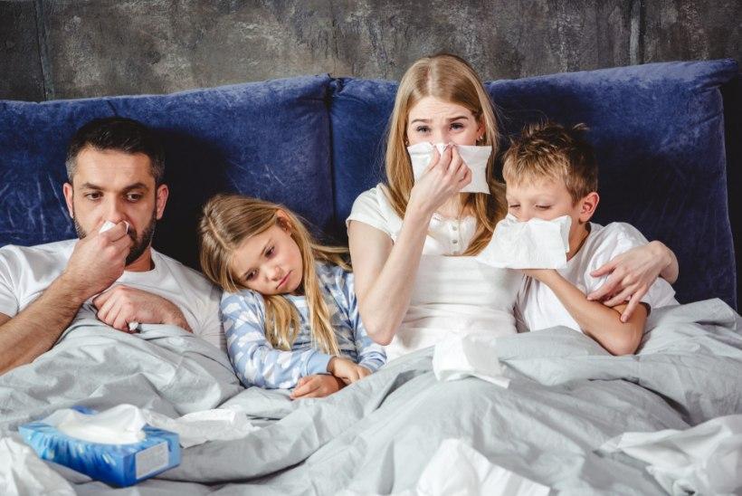 HEA UUDIS: grippi haigestunute arv sel nädalal ei suurenenud