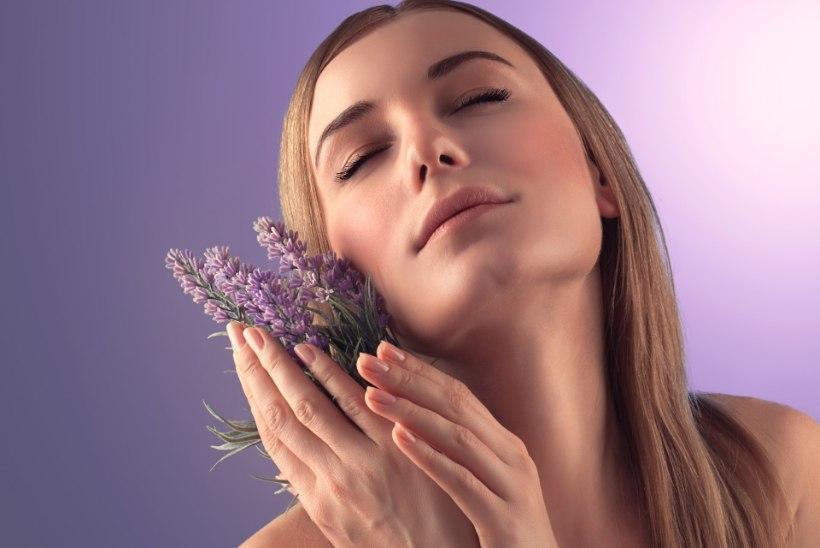 Neli taime, mis aitavad unehäireid peletada