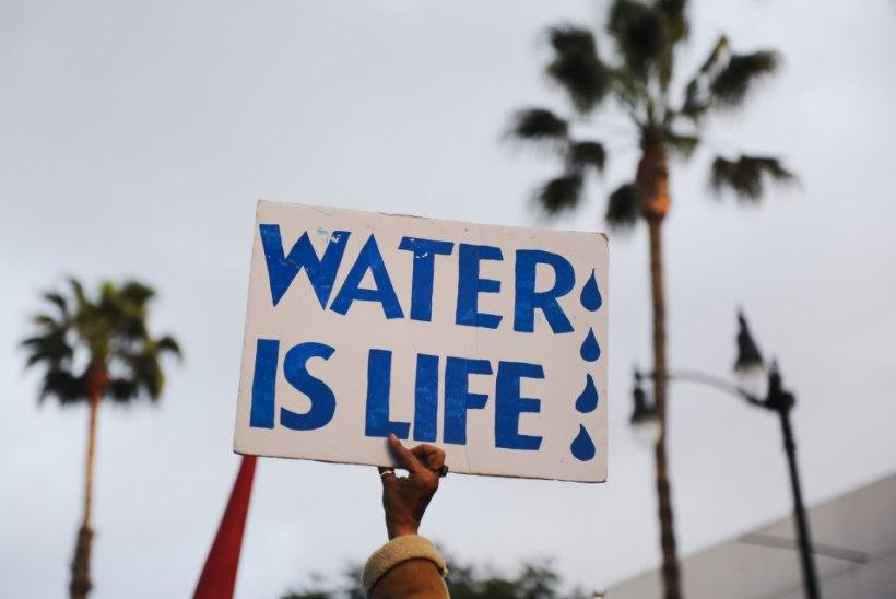 VAATA PILTE! Naftajuhtme vastu protestijad kasutasid ära Oscarite melu