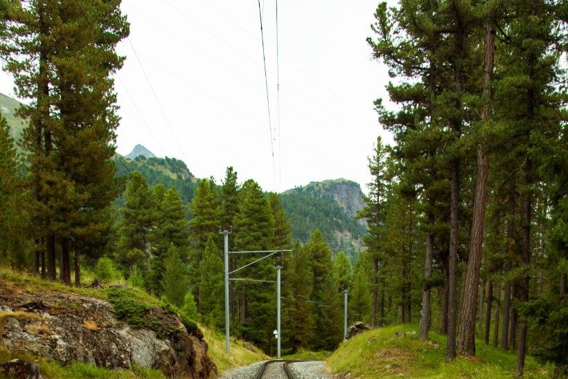 Itaaliast Šveitsi sõitnud rongi katuselt leiti surnud mees