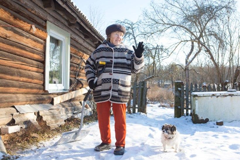 ILVESEGA VÕIDELNUD VANADAAM: see suur elukas võttis väikese Pitsu lõugade vahele ja oli valmis ta otse koduukse ees ära sööma!