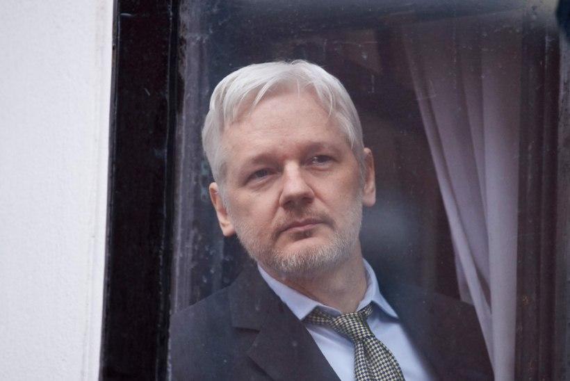 Julian Assange häkkis Pamela Andersoni südamesse