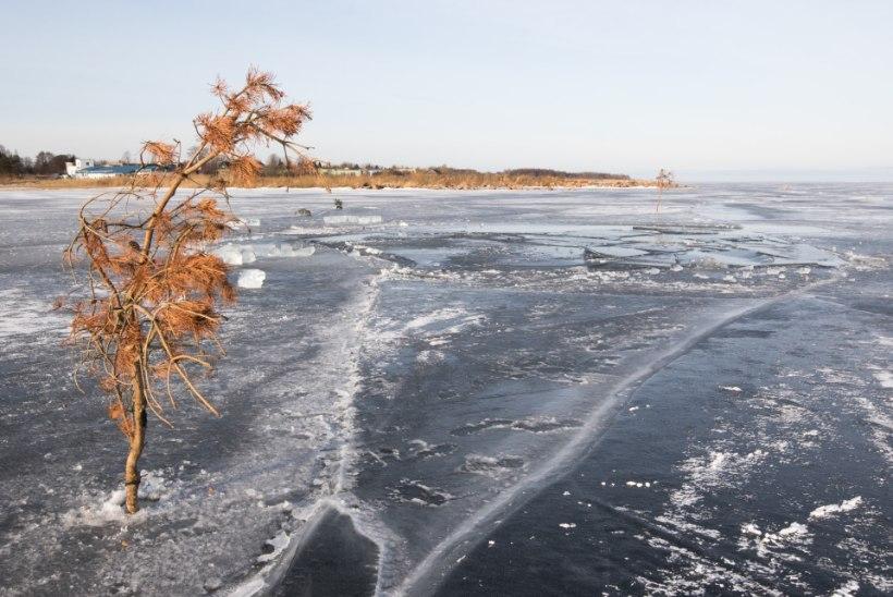HOIATUS! Peipsi jääle on tekkinud laiad praod