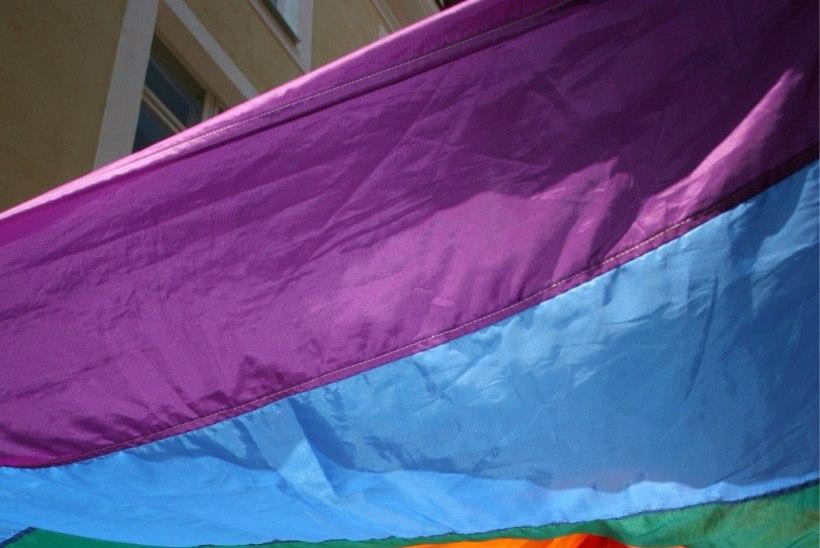 Seksuaalvähemuste paraad Tallinn Pride tuleb taas augustis