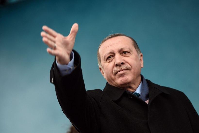 Erdoğan nimetas Hollandit natsijäänukiks