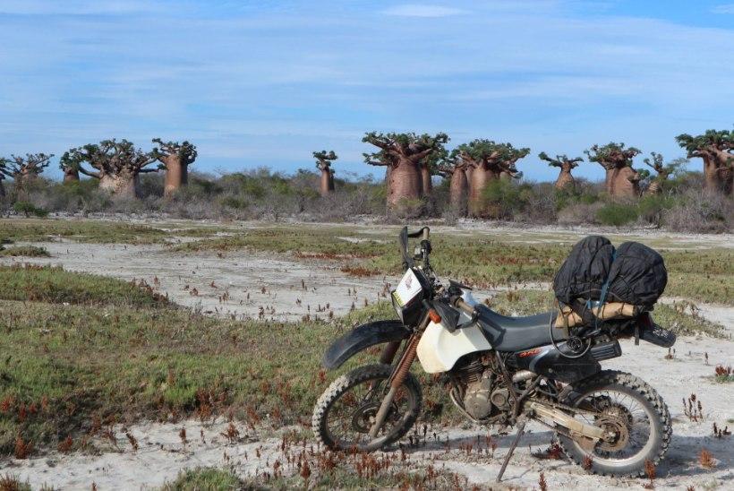 GALERII JA VIDEO | Eesti tsiklimees pääses väikemootorrattal Madagaskarit läbides napilt surmasuust