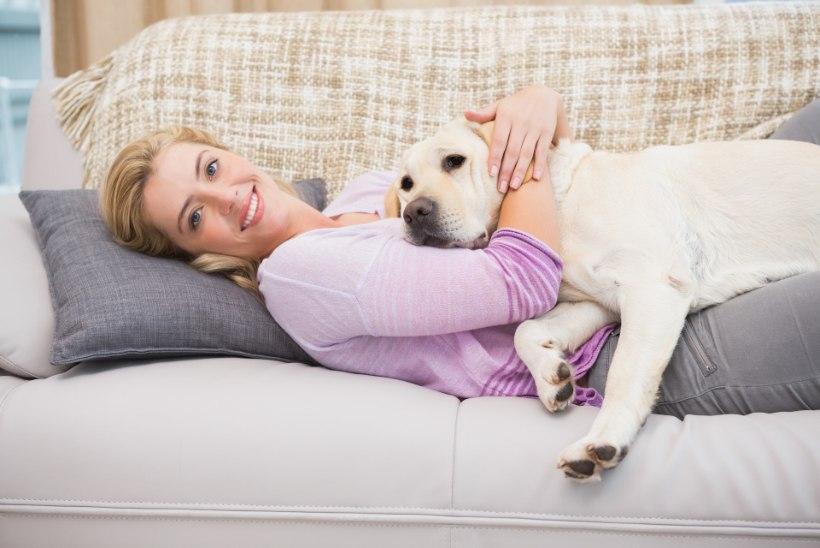 Seitse viisi, kuidas lemmikloomad su tervist parandavad