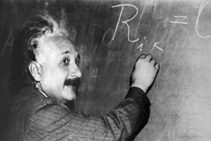 Einsteini kuulsa mõistatuse suudab lahendada vaid 2% inimestest. Vaata, kas sina kuulud nende hulka