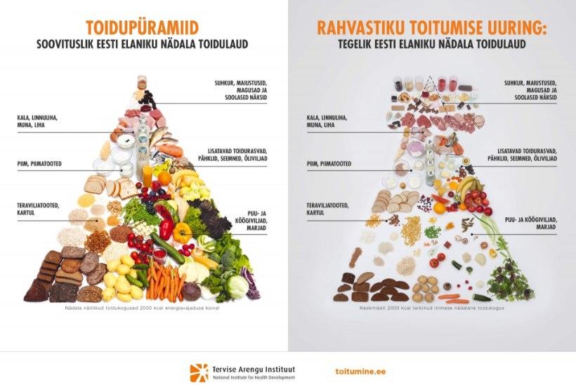 Kuidas kohandada oma toidulaud uutele toitumissoovitustele vastavaks?
