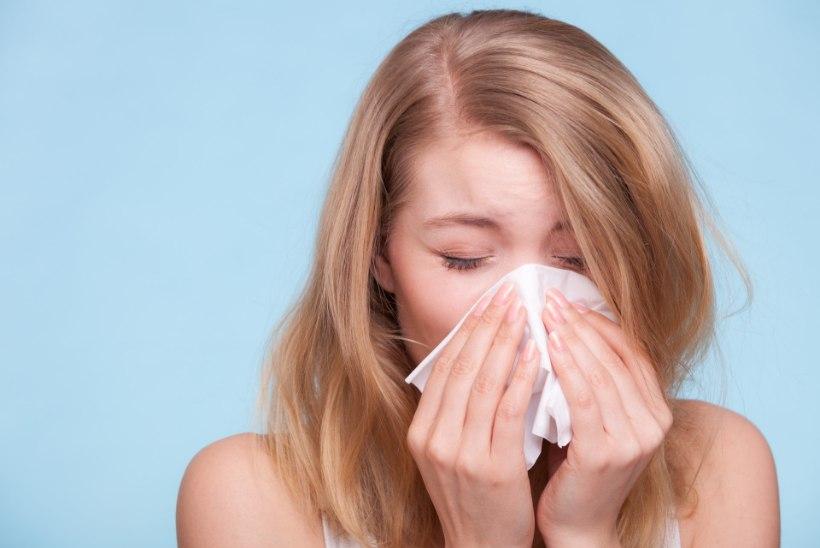 Kuus nõksu kevadise allergiapuhangu leevendamiseks