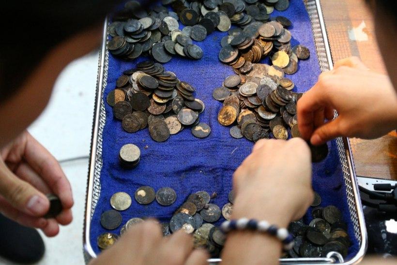 915 münti alla neelanud kilpkonn suri