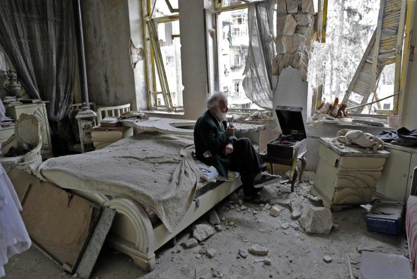 GALERII | Süüria vanahärra hoiab sõja kiuste oma vanade autode kogu