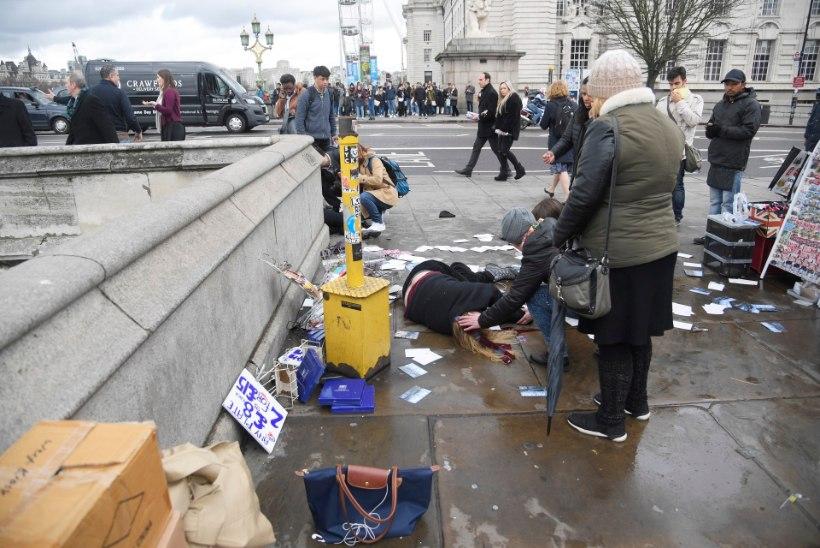 Terror Londoni südames