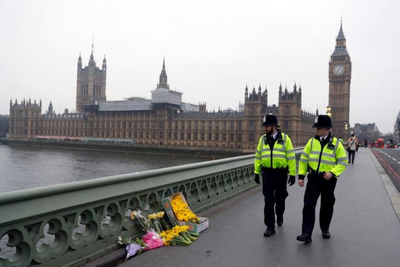 Ekspert: terror on muutunud mitmetahulisemaks
