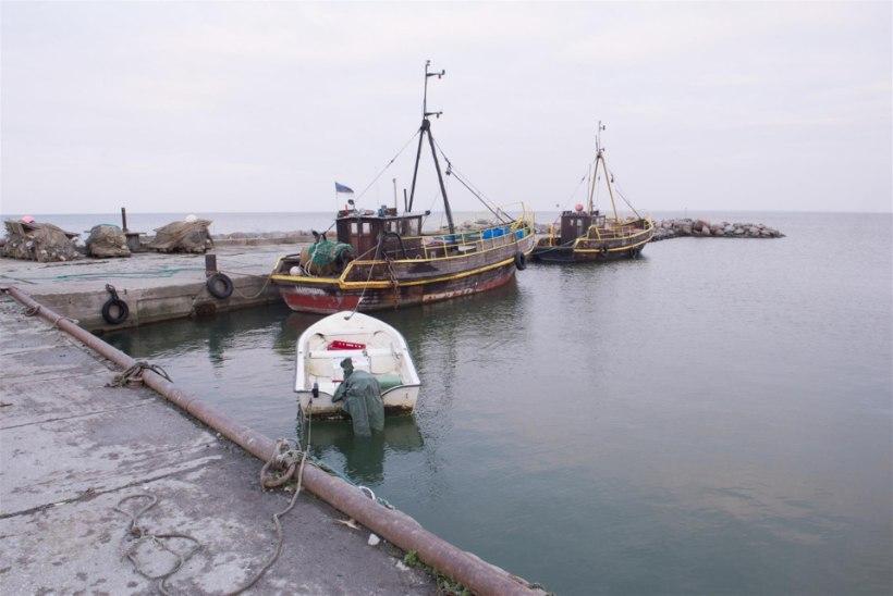Esimene üle-eestiline avatud kalasadamate päev tulekul