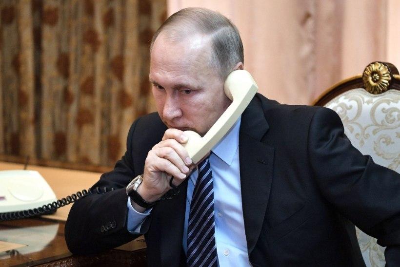 Sotsioloogid: Stalin on Venemaal tagasi