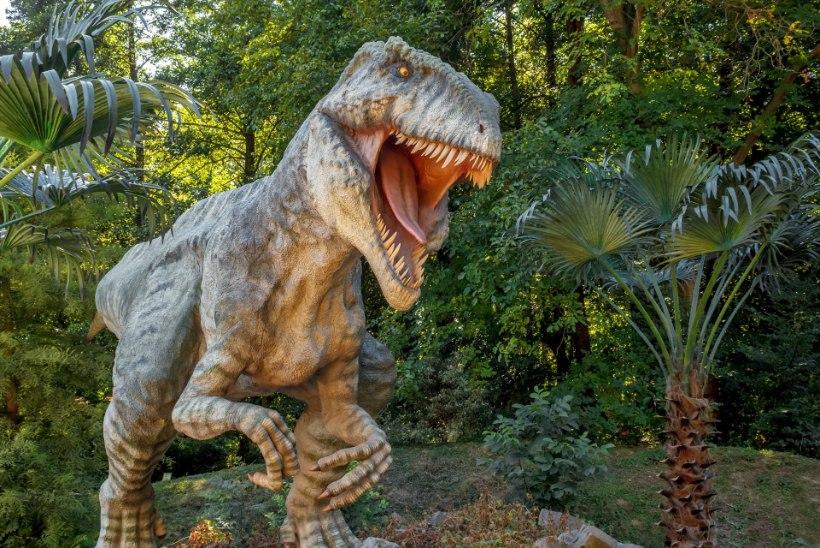 HIRMUS, KUID ÕRN: Türannosaurus Rex oli malbe armastaja