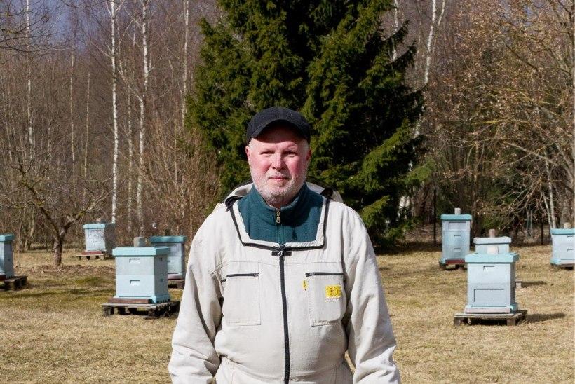 Surnud mesilased: posijate järgmine mood?