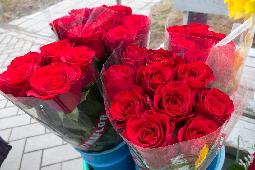 KUI PALJU LILLI KINKIDA NAISELE? Vaata järele, mida ütleb lillede arv kimbus!