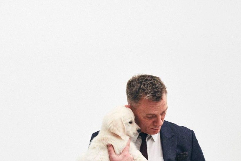 MIDAGI NAISTELE! Karm Bond Daniel Craig poseerib koos kutsikatega