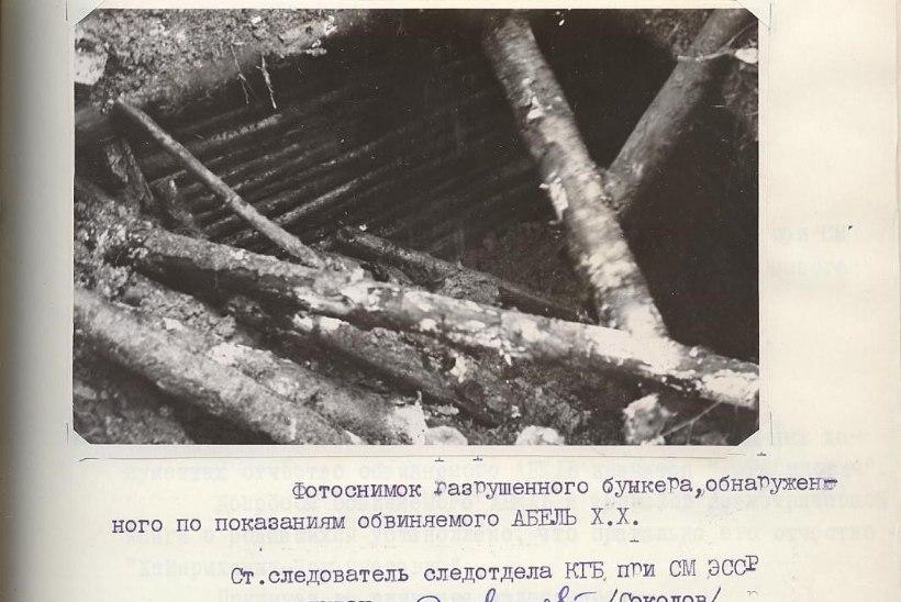 GALERII JA VIDEO | Punkrite arhitektuurist ehk Kus varjasid end metsavennad?