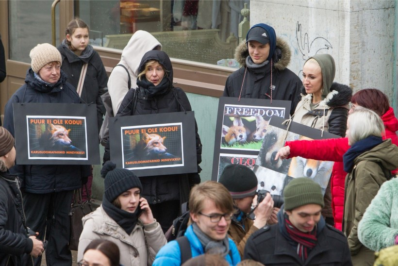 GALERII   Loomakaitsjad marssisid Tallinna vanalinnas karusloomafarmide vastu