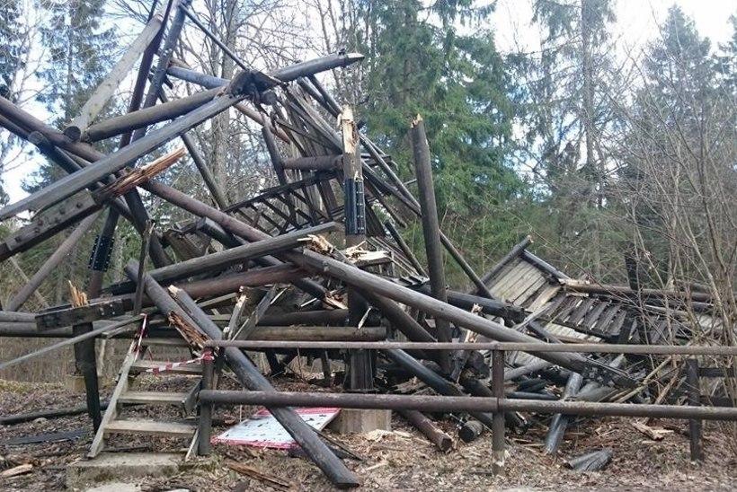 Tormis hävinud Iisaku vaatetorni asemele tuleb kuni 90 000 euro eest uus