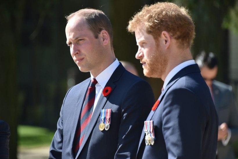Prints Harry ema surmast: hakkasin oma leinaga tegelema alles 28aastasena