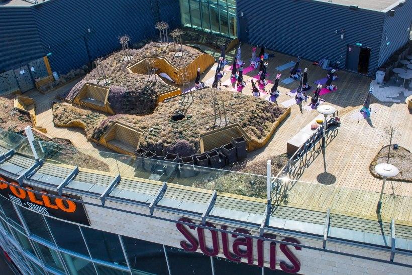 GALERII   VÕIMLEMINE KÕRGUSTES: Tallinna tudengid tegid Solarise katusel joogat