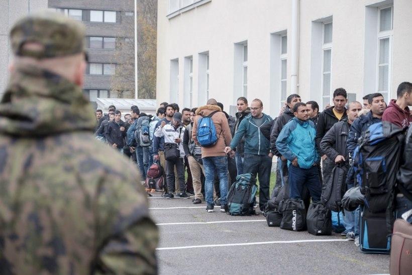 Soome uurimus: vaid kolmandik ettevõtjaid on valmis tööd andma puuduliku keeleoskusega pagulastele