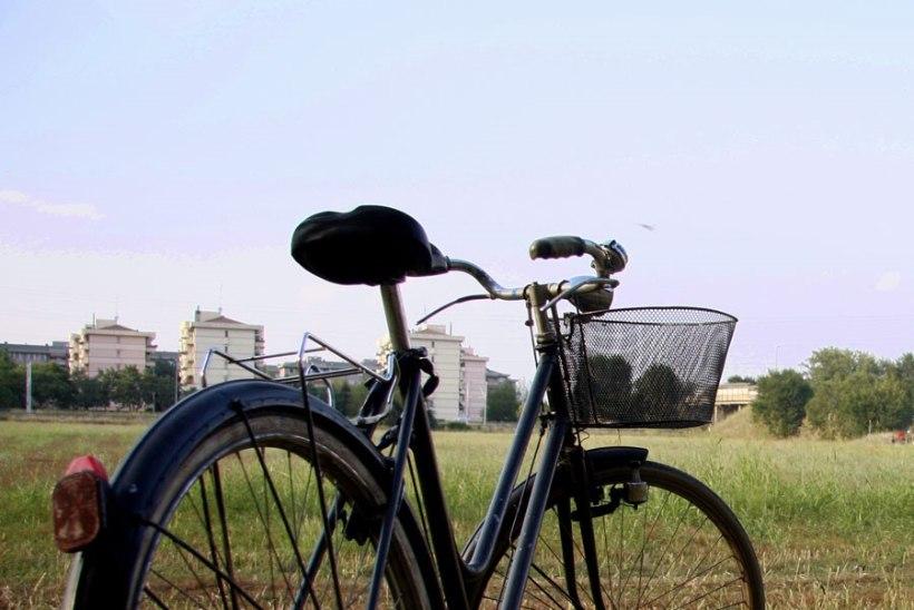 Politsei tagastas 14 aastat tagasi varastatud jalgratta omanikule