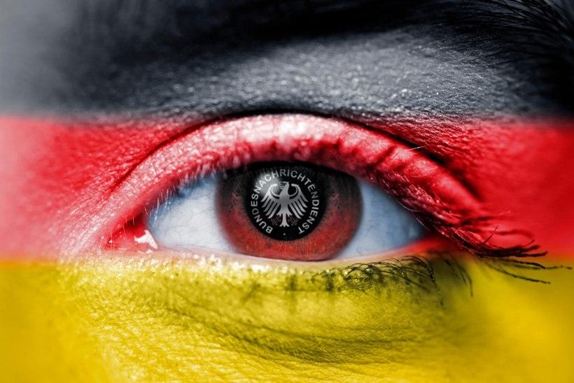 Sakslased luurasid Interpoli järele