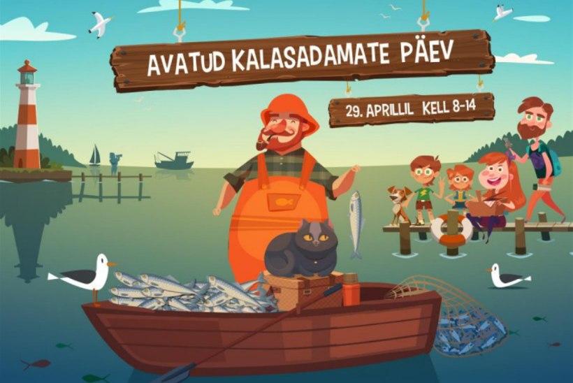 Esimene üle-eestiline avatud kalasadamate päev juba sel laupäeval