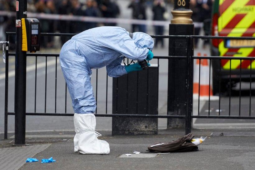 FOTOD | Briti parlamendihoone juures vahistati mees, kes kandis endaga kaasas kaht nuga