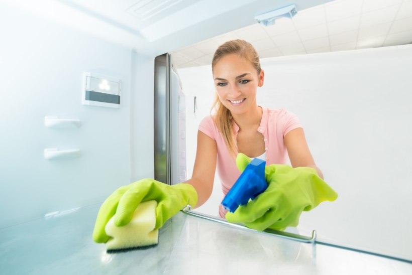 Kui sageli peaks oma tervisele mõeldes puhastama tualetti, külmkappi ja voodit?