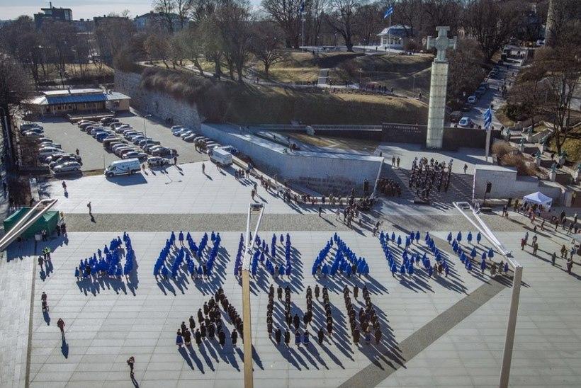President Kaljulaid: iga sinililleõis loeb