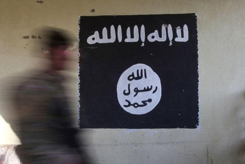 Vene meedia: Islamiriik võttis vastutuse kahe kallaletungi eest Astrahanis