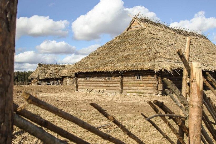 """Ivo Felt: ehitasime """"Tõe ja õiguse"""" filmi jaoks Läti piiri äärde päris küla"""