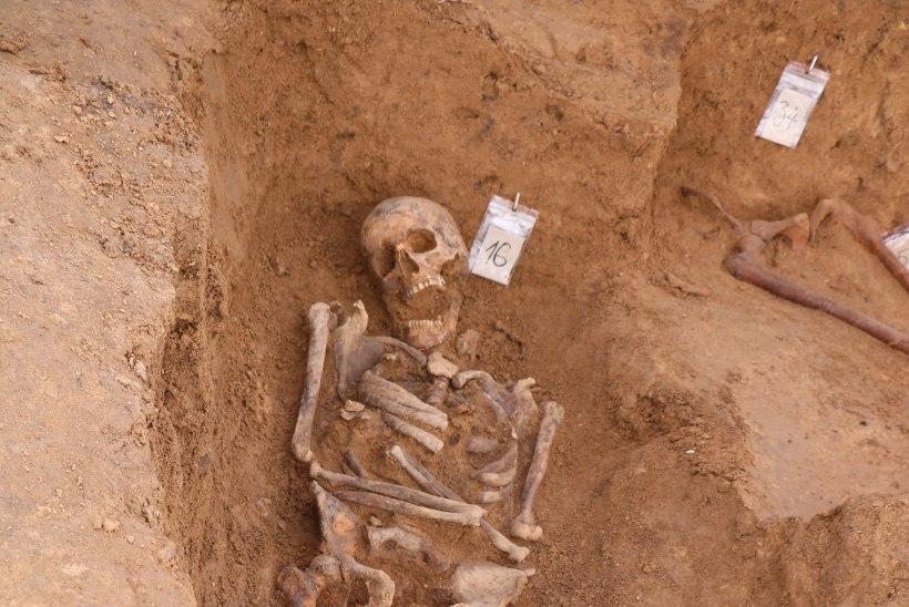 Arheoloogid kaevasid Vastseliinas välja maharaiutud pea ja lõikehaavadega laibad