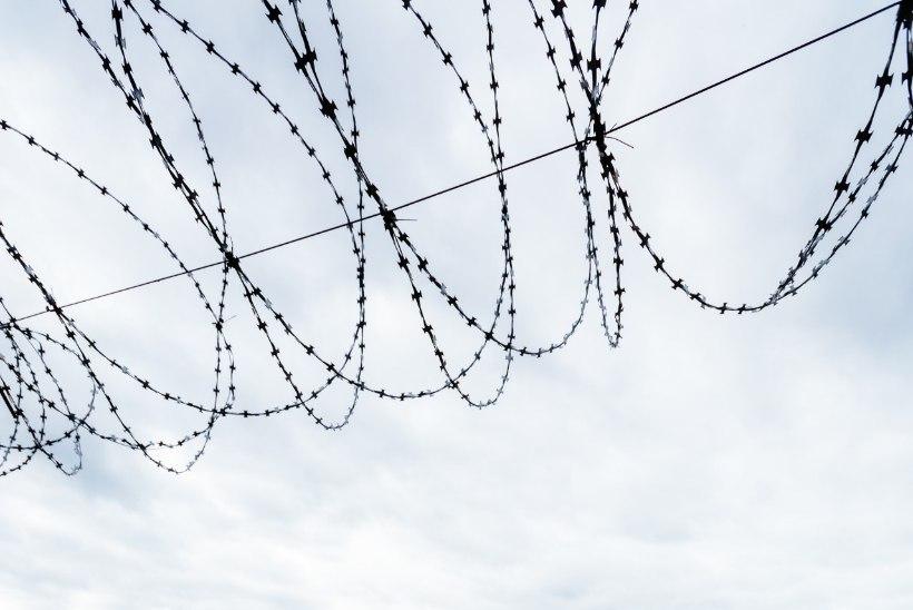 Suvel pääseb Murru vanglasse teatrisse